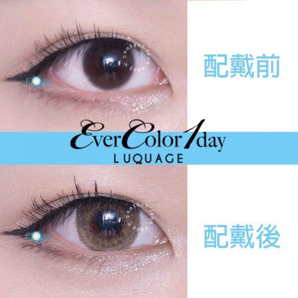 EverColor 1 Day LUQUAGE (30片)_cover3